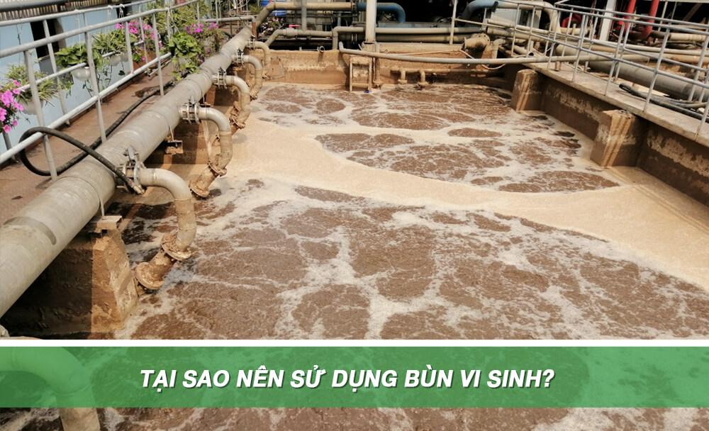 tại sao nên sử dụng bùn vi sinh