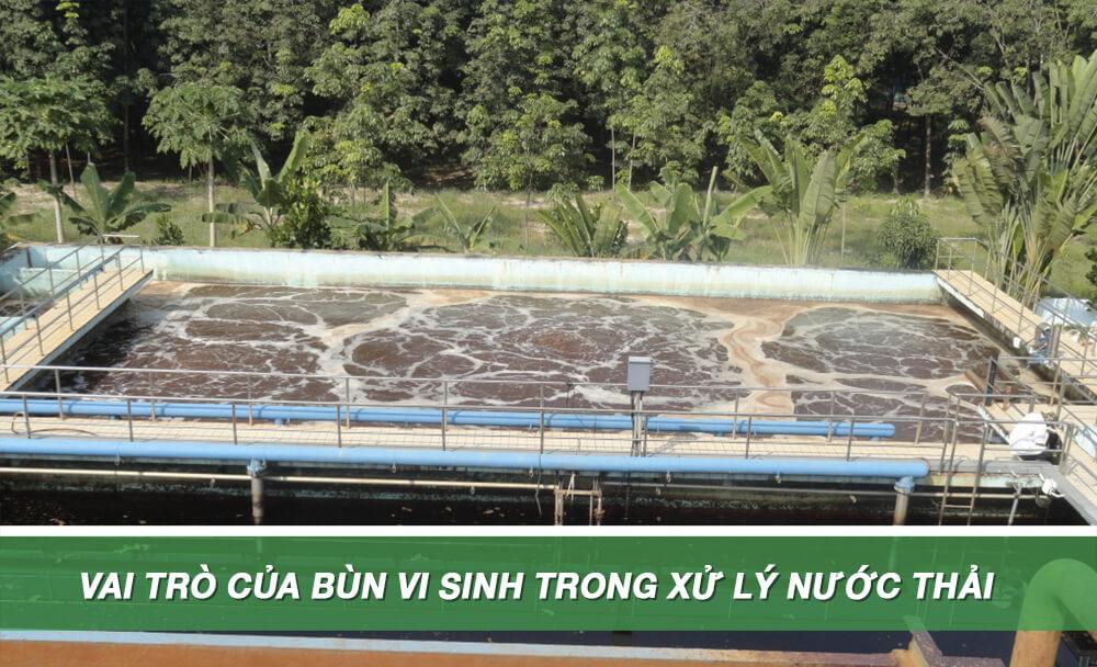 vai trò bùn vi sinh trong xử lý nước thải